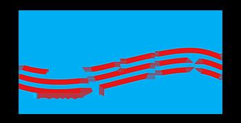 206 Precinct logo